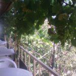 nomera-s-balkonom_5831